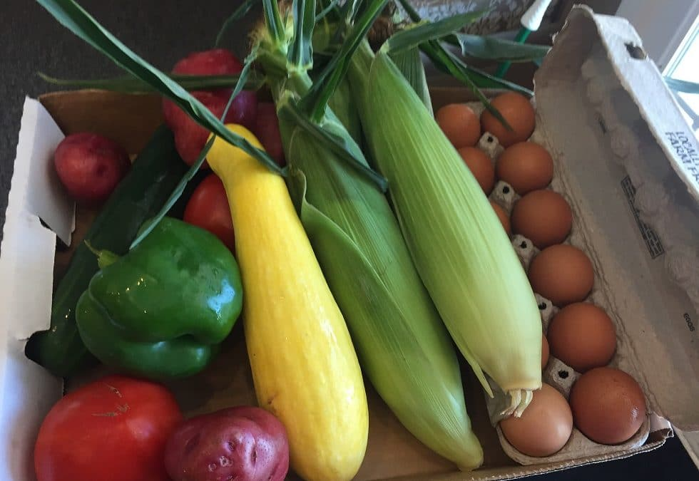 Veggie boxes build health and local economy